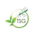 TSG Landscapes – Offering Finest Landscaping Services In Cambridge